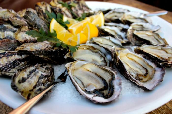 """Shuckingly good"" Waiheke Oyster Festival 2016"